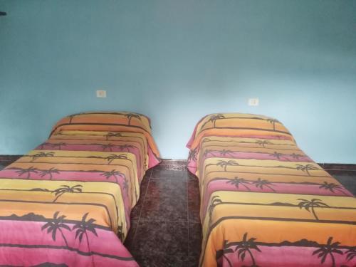 179家西班牙拉帕尔马岛可以带宠物的酒店
