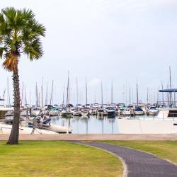 芭提雅海洋码头