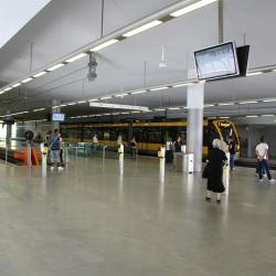 特林达迪地铁站