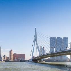伊拉斯谟斯大桥, 鹿特丹