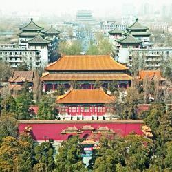 北京地区 376间家庭酒店