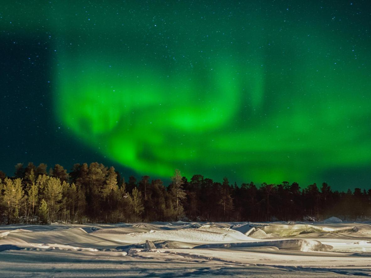隆冬去芬兰伊纳里看驯鹿