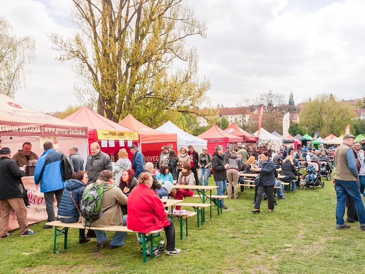 Family Friendly Beer Festivals Booking Com