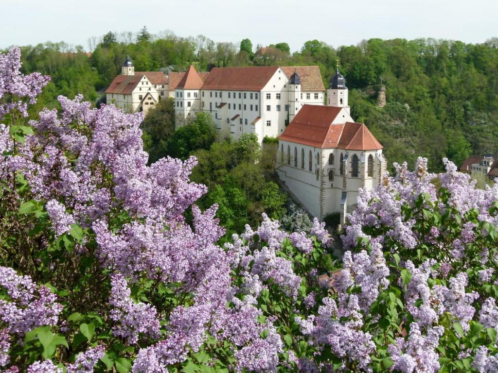Schloss Haigerloch鸟瞰图