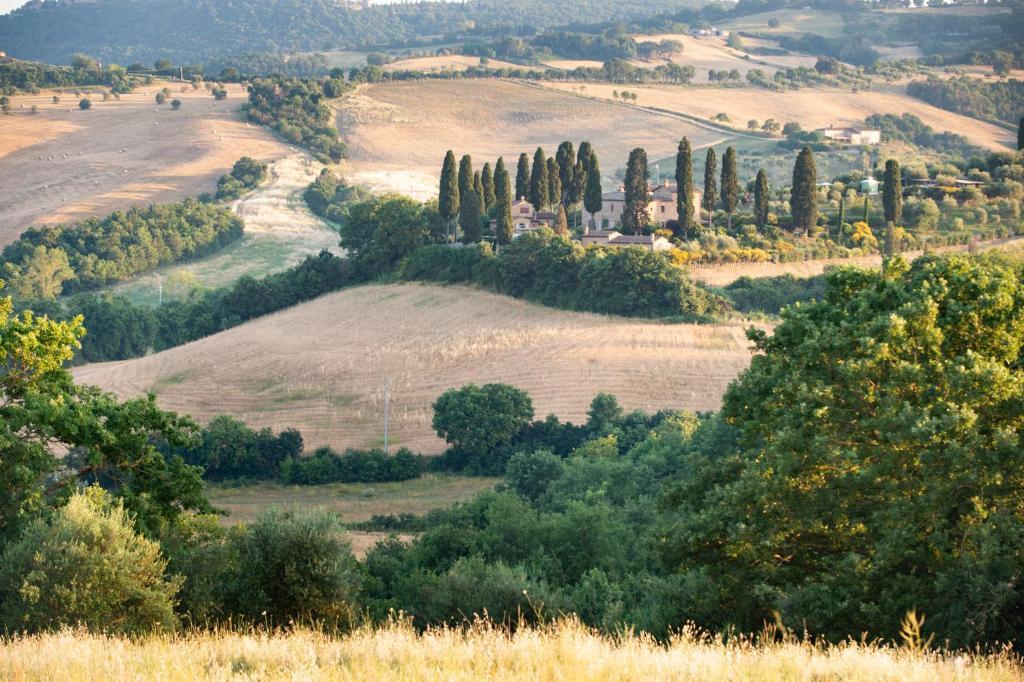 Villa San Sanino - Tuscany鸟瞰图