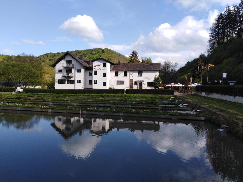 Hotel-Restaurant Forellenzucht内部或周边的泳池