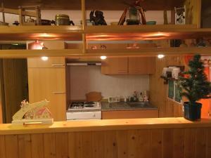 Apartma Metka的厨房或小厨房