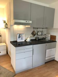 Ferienwohnung Kraft的厨房或小厨房