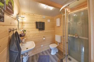 Flüzerhütte的一间浴室