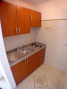 露多维卡踢波C公寓的厨房或小厨房