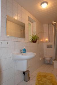 Im Kuckucksnest的一间浴室
