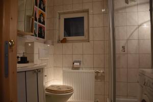 Haus Tabernig的一间浴室