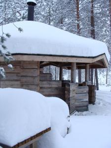 冬天的Sallainen Panvillage