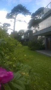 Jurata Apartment外面的花园