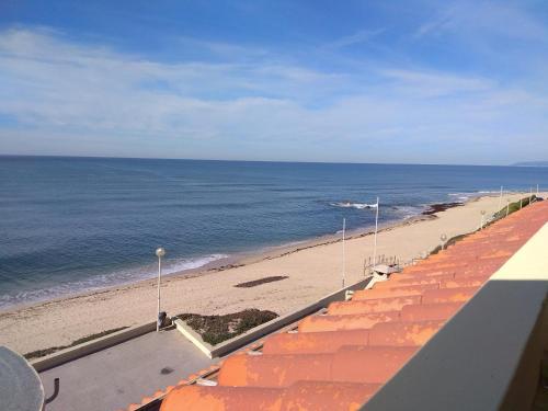 公寓旁或附近的海滩
