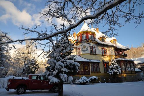 冬天的杰森斯基住宿加早餐旅馆