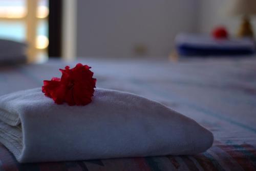 Tropicana Ocean Villas客房内的一张或多张床位