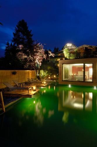莫泽霍夫酒店内部或周边的泳池