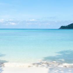 迈考海滩 77家酒店