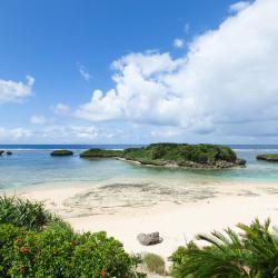 西表岛 19家酒店
