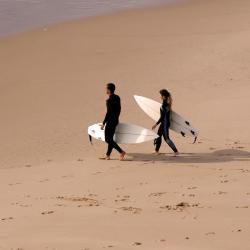 卡帕里卡海岸 236家酒店