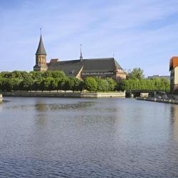 加里宁格勒 1568间公寓