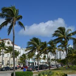 迈阿密海滩 23间度假屋