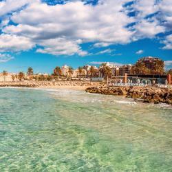 帕尔马海滩 88家酒店