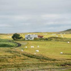 Hlíðarendi 4家酒店