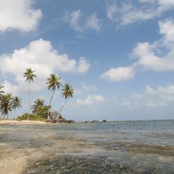 小玉米岛 22家酒店