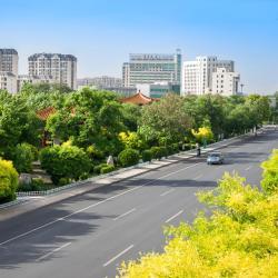 武清 21家酒店