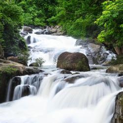 坤西育府 13个度假村