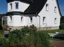 Haus Elsholz Usseln FeWo Birke