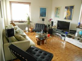 Comfortable apartment close to the city centre