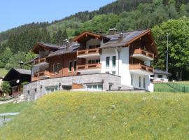 Penthouse Viehhofen
