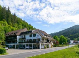 A Black Forest Apartment-Zum Letzten G'Stehr