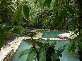 Hotel Termales del Bosque