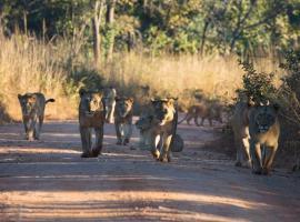 Mawimbi Bush Camp, Chunga