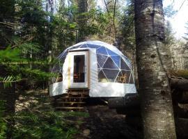 Dome Ecologie - Centre de l'Hetre