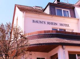鲍姆斯莱茵酒店
