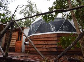 智利漩涡生态山林小屋