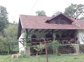 Casa Pinul, Băcîia (Geoagiu附近)