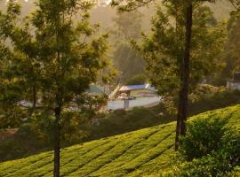 Munnar valley view