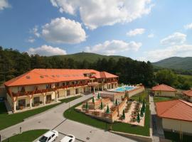 萨拉吉卡里格特酒店, 锡尔沃斯瓦里德