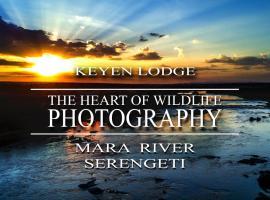 Keyen Lodge Serengeti, Nyanungu