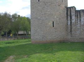 Turm Laange Veit