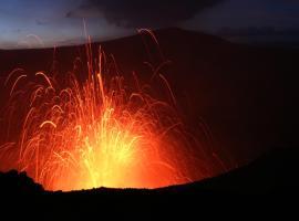 Volcano whispering Lodge