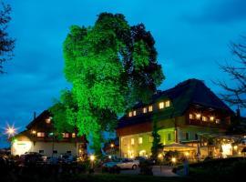 左纳酒店, Gödersdorf
