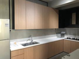 Singapore apartment 新加坡市中心新装修干净整洁