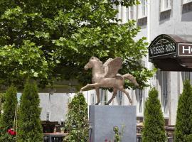 维西斯罗斯酒店